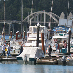 View of boat moorage and the Siuslaw River Bridge